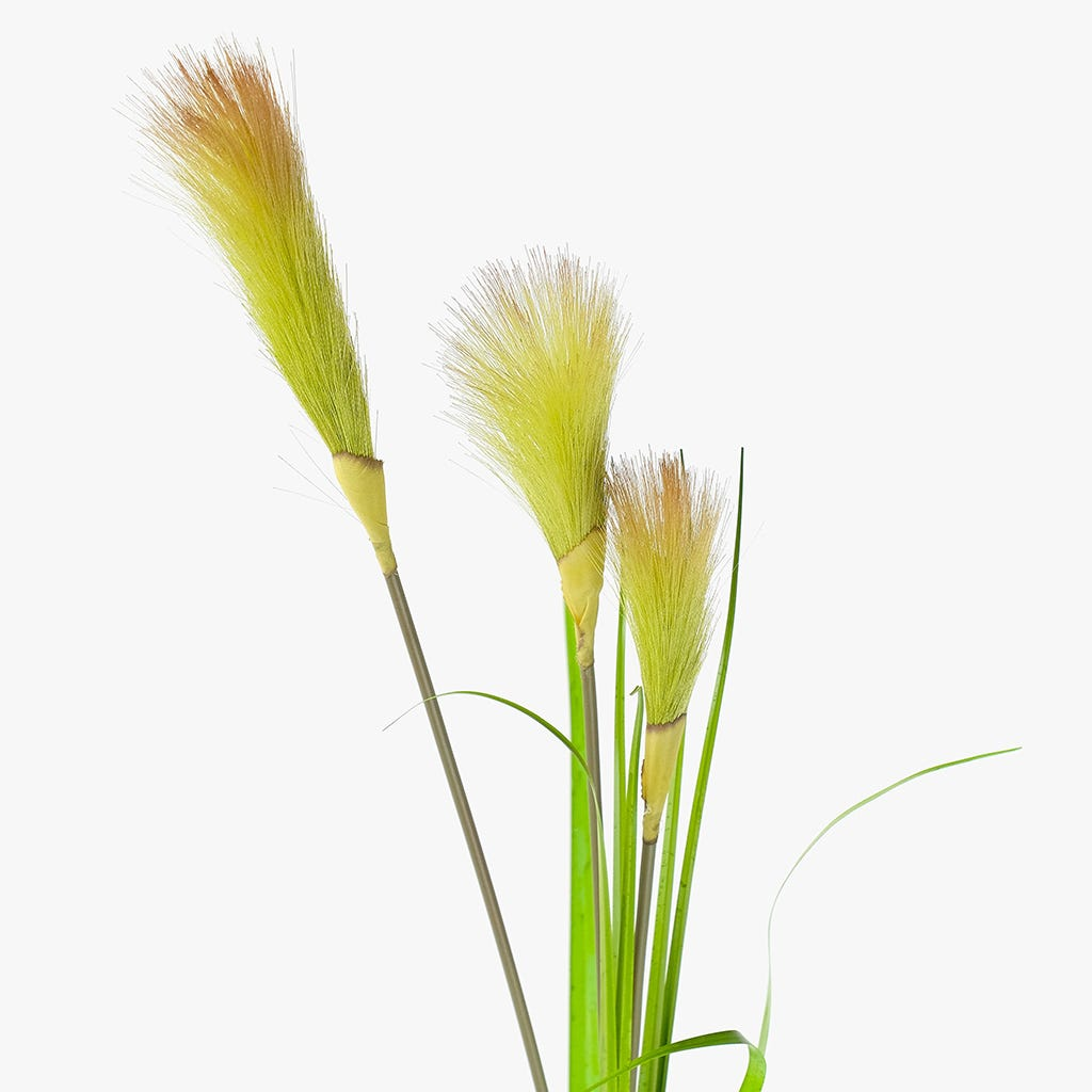 Typha Verde 121 cm