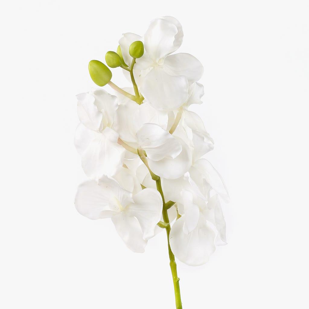Rama de Orquídeas Blanco 76 cm