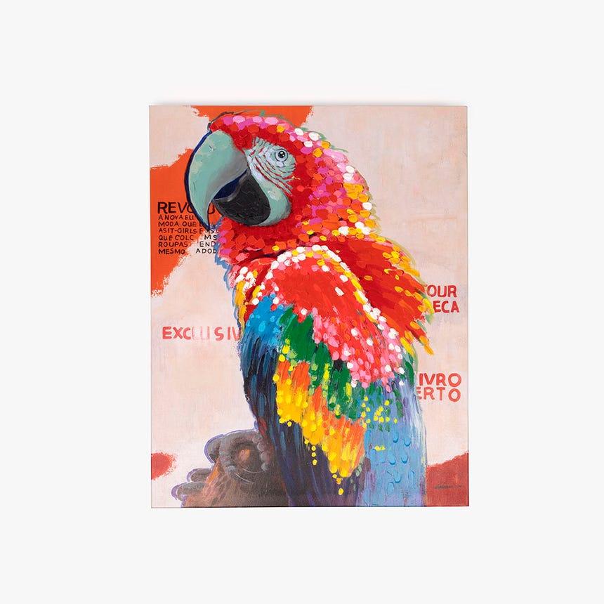 Tela papagaio 90x120 cm