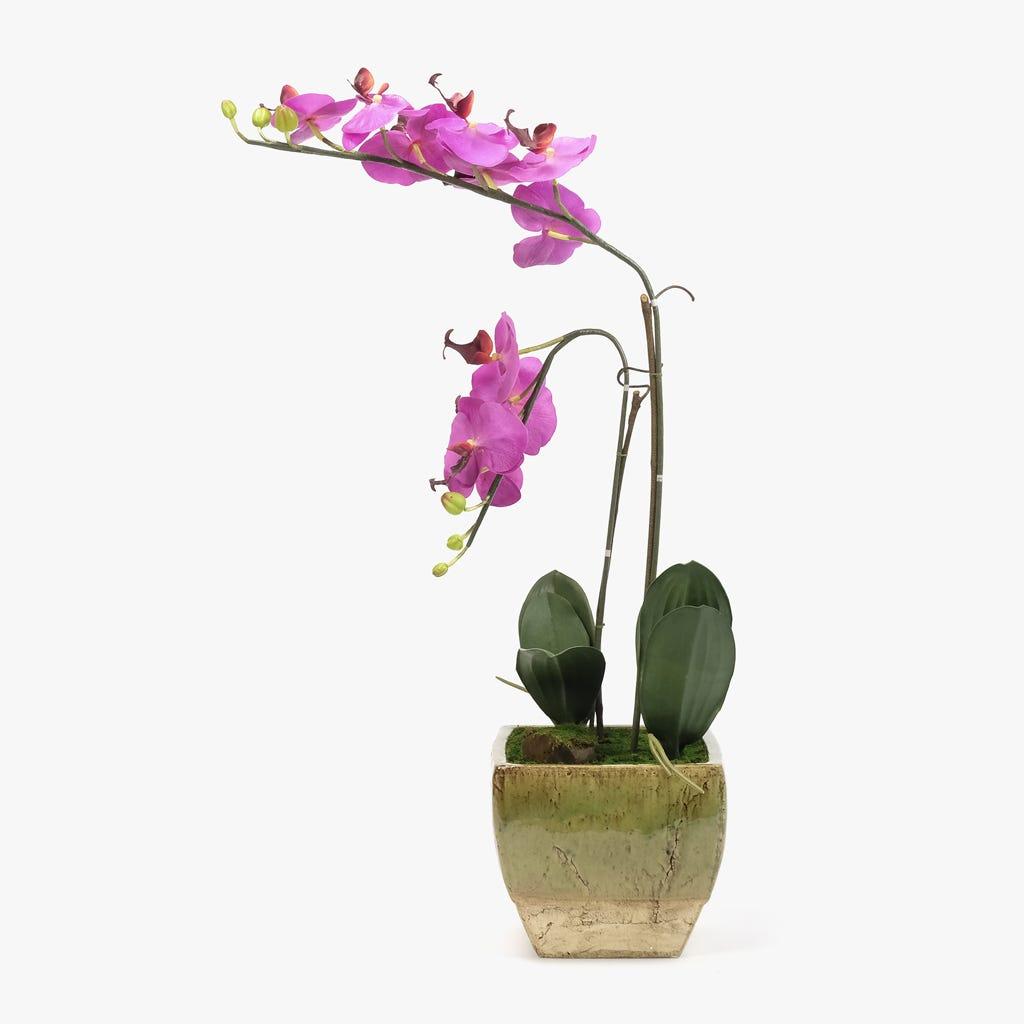 Maceta Orquidea Lila 80x40 cm