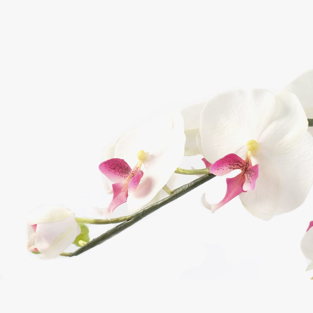 Vaso Orquídea Branca 65x40 cm