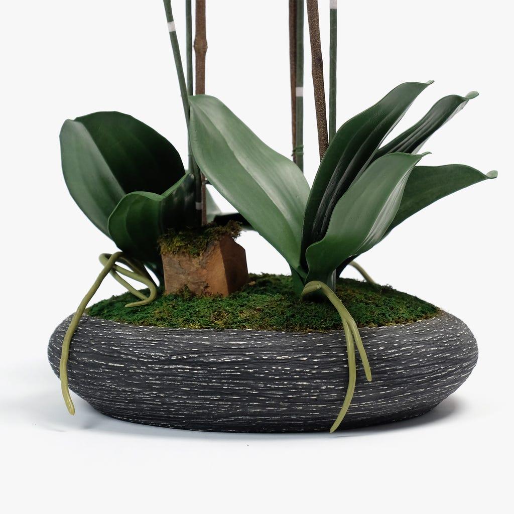 Orquídea Rosa 74 cm